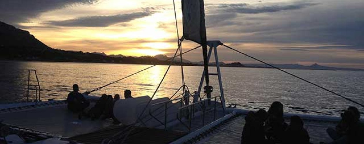 Malaga Boat Trip at Sunset and Dinner at the Port